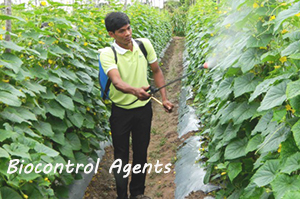 Biocontrol Agents