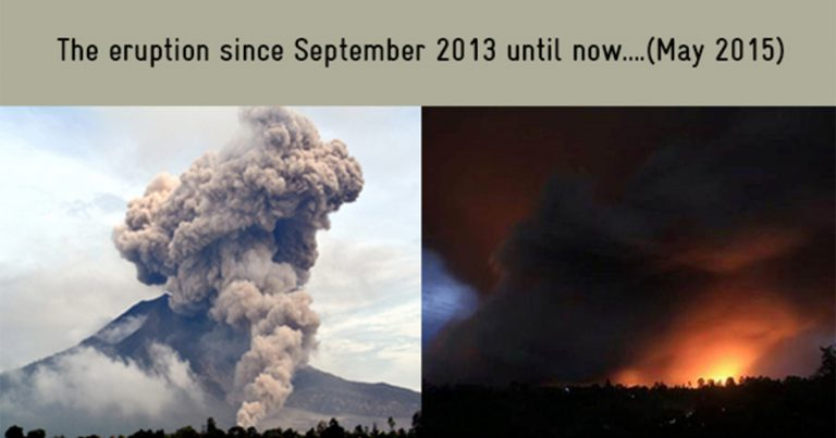 Sinabung Agricultural Response Project (SARP), Indonesia