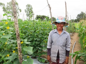Mrs. Choun Yan, 37, farmer using Trichoderma, Siem Reap Province, Cambodia