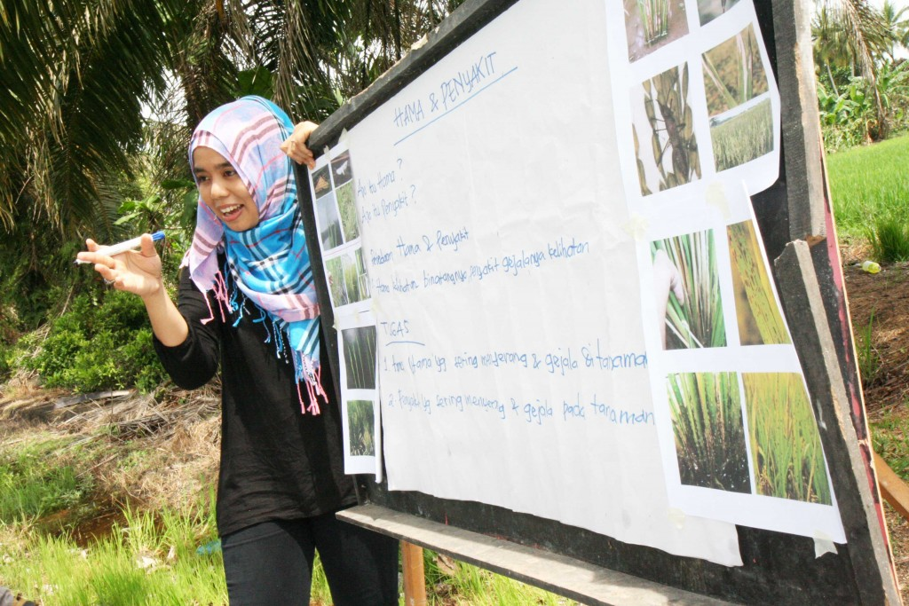 Field Facilitator tells about pest and diseases to her student farmers at the Farmer Field School.