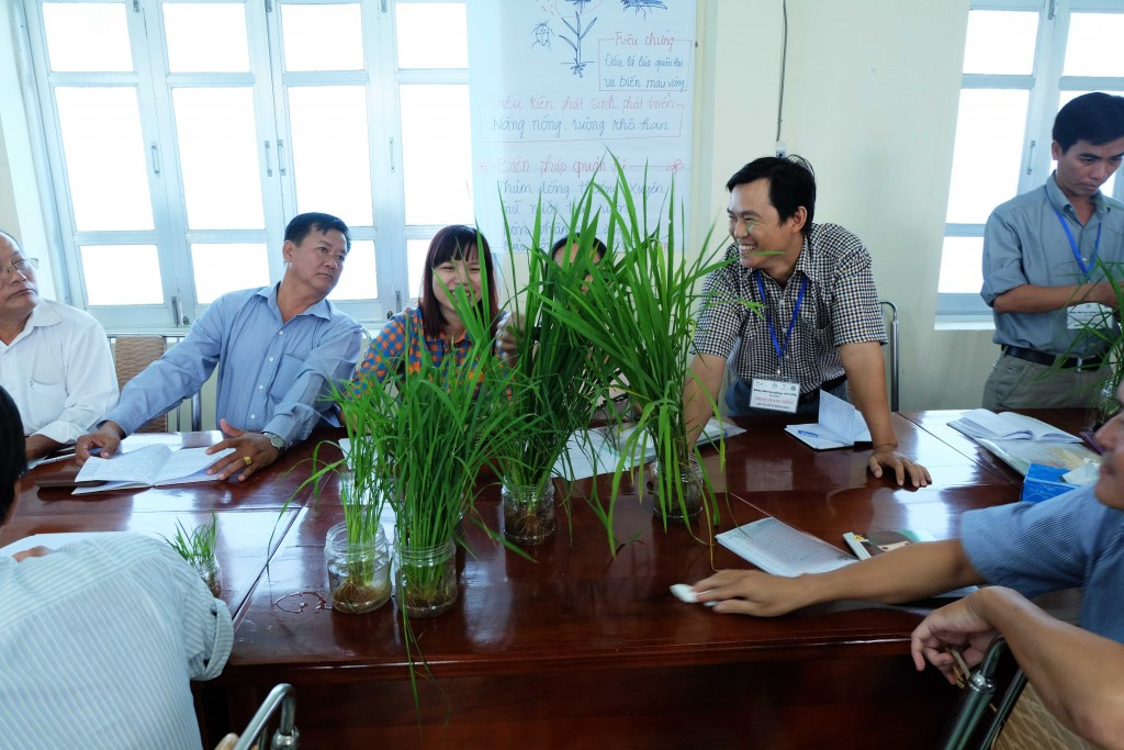 Training of Trainers on Integrated Pest Management in Tien Giang, Vietnam