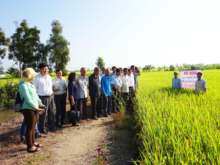 GIZ / Croplife International's Integrated Pest Management project aims to strengthen both the government officers and the farmers' knowledge and skills on Integrated Pest Management to have the right decision making in the fields.