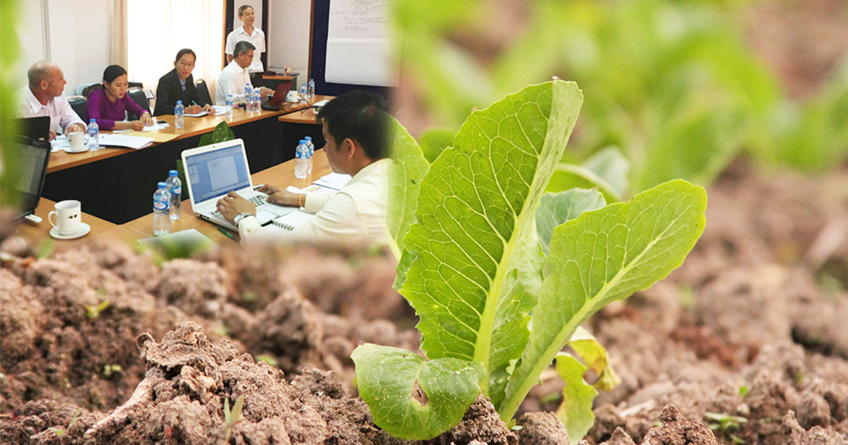 Lao experts contribute to the ASEAN Regional Guidelines on Soil and Nutrient Management