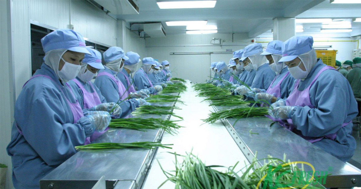 Standard is needed to lift Thailand's agrifood trade, says exporter