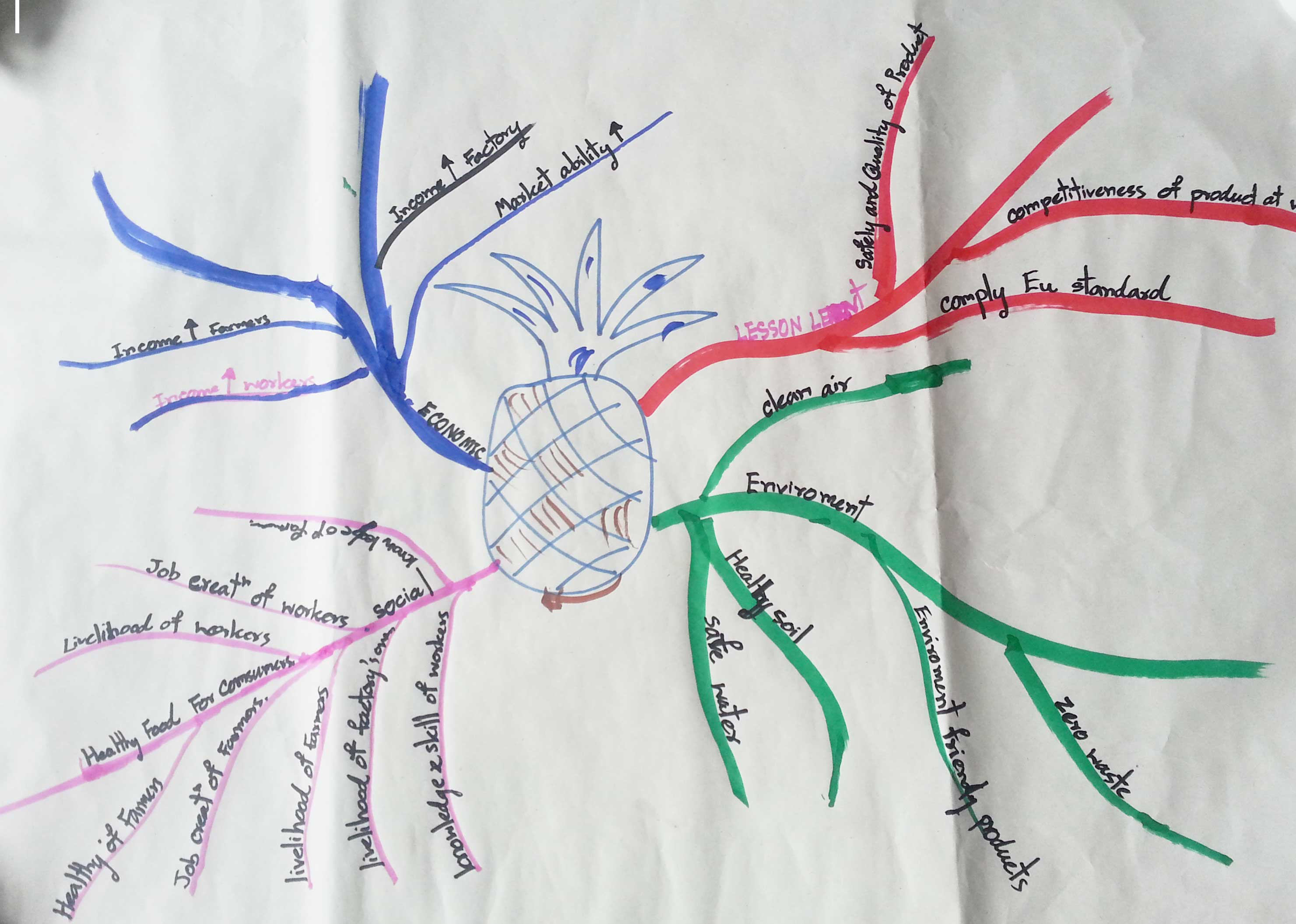 Fruit juice mind map