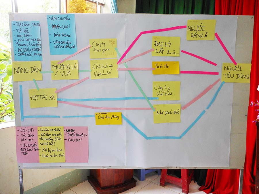 Through mapping of the value chain, the participants discuss all the activities taking place from the mango orchard to the final consumer.