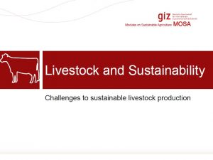 Livestock and Sustainability