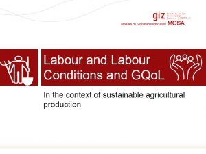 Labour and Labour Conditions and GQoL