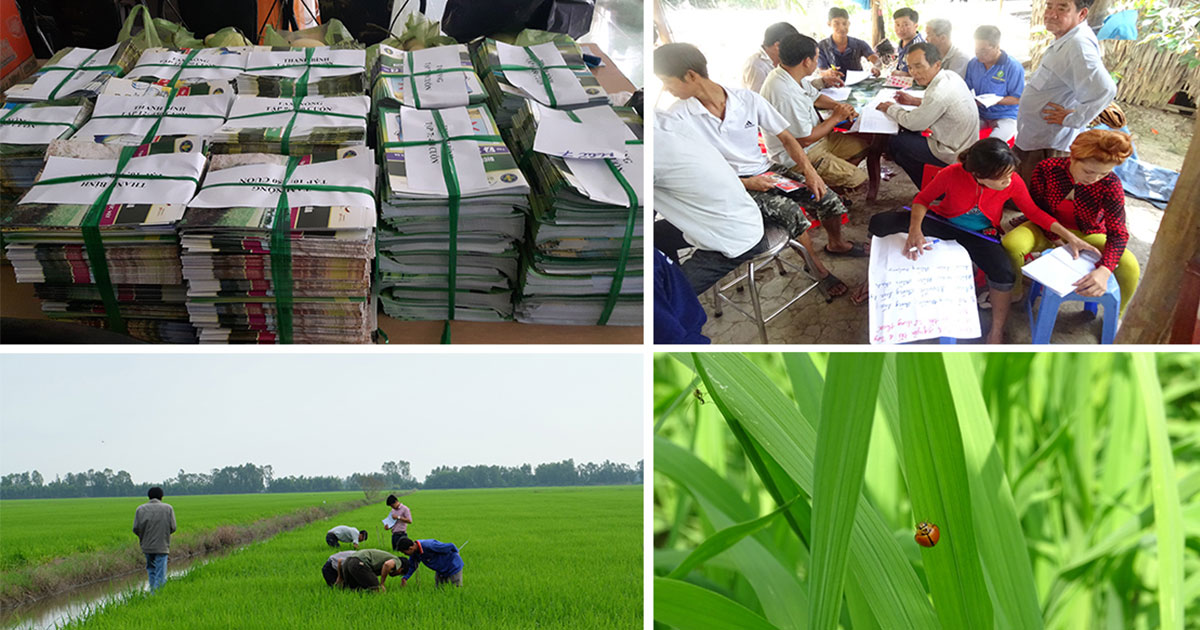 Integrated Pest Management in Viet Nam: Trainings, clubs, booklets, and videos