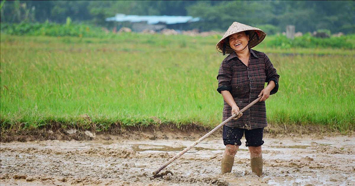 ASEAN Sustainable Agrifood Systems project generates 98 million euros of additional income to 125,000 farmers in four years