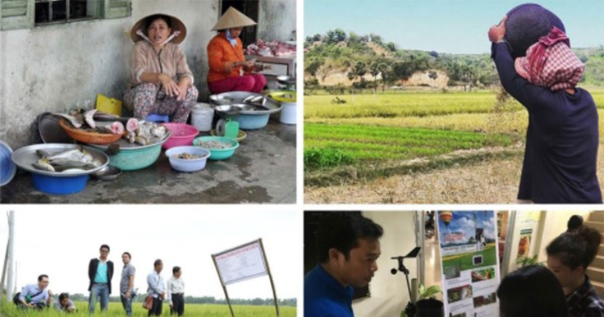 ASEAN Guidelines for Promoting Climate Smart Agriculture Practices (Volume II) launched