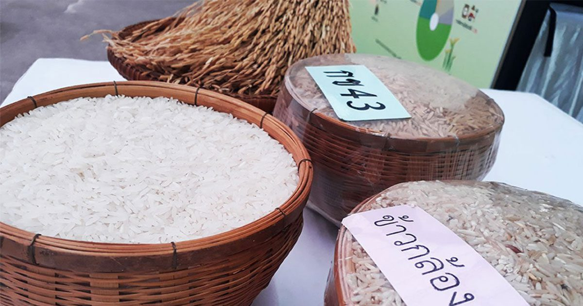 New market opportunity for white rice in health trend