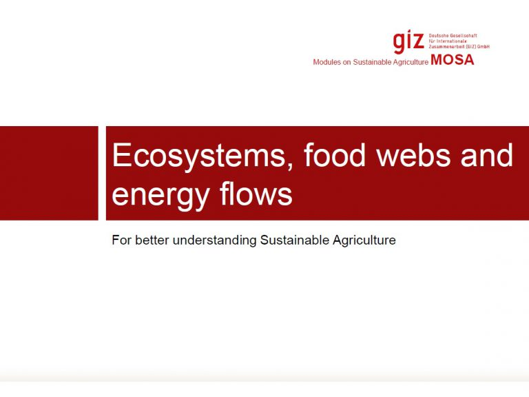 Ecosystems, food webs and energy flows