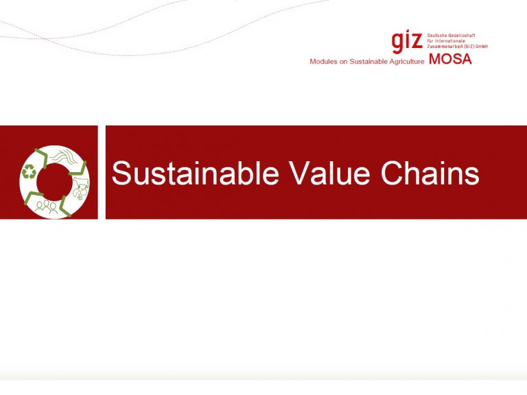 Sustainable Value Chains