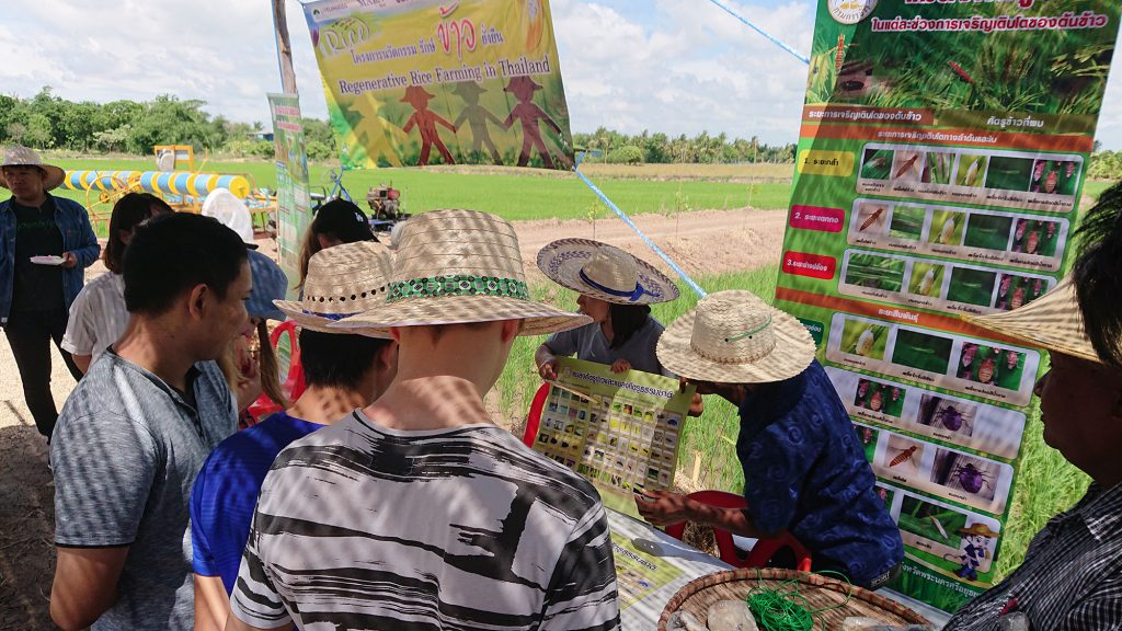 A GIZ staff shows different pests which might be found in rice fields and cause severe damage. (Photo credit: Tobias Vomberg/ GIZ Thailand)