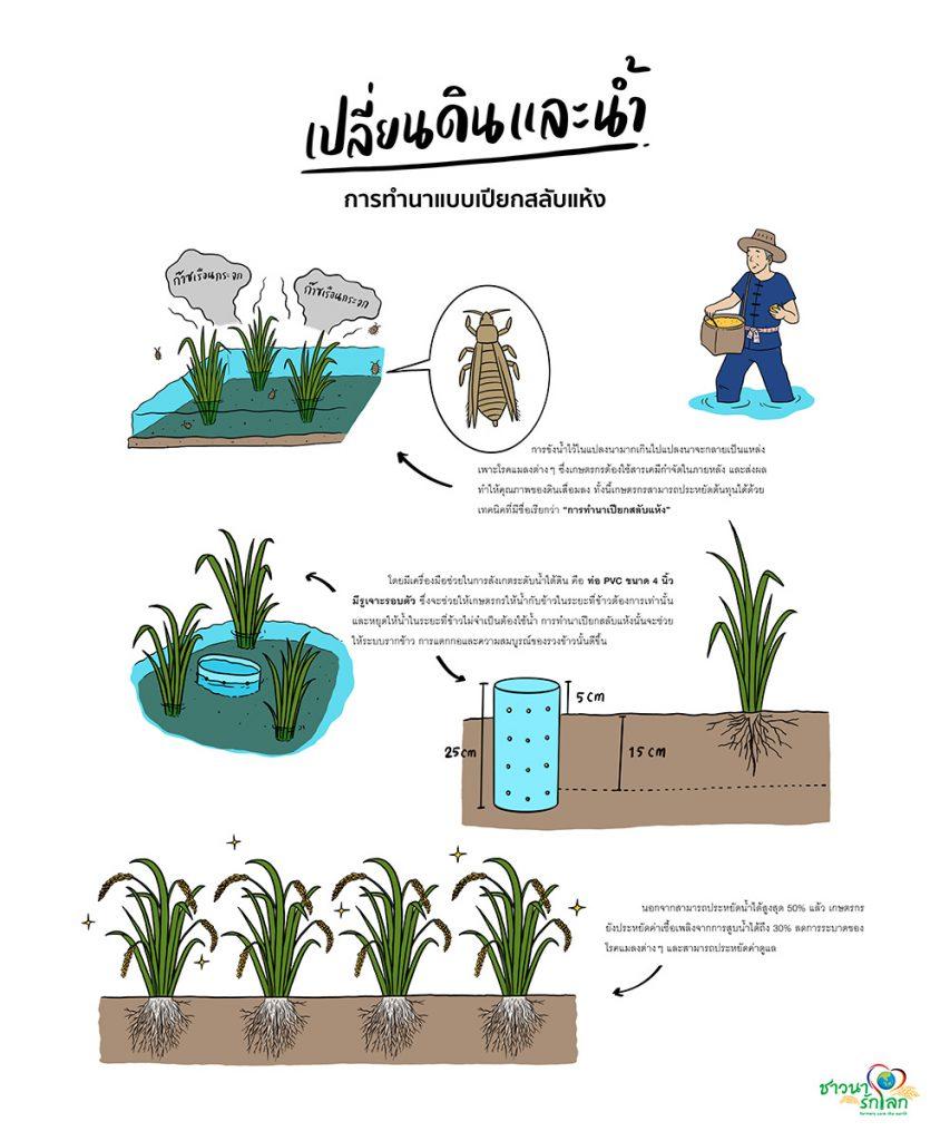 เปลี่ยนดินและน้ำ