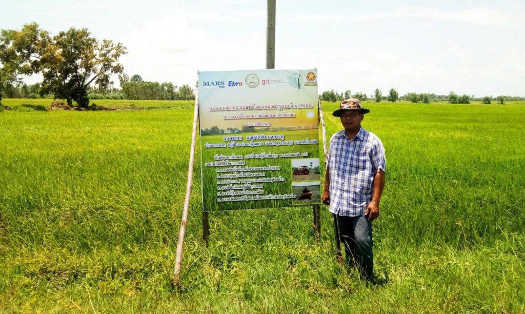 นายวันชัย มาสระคู เกษตรกรอายุ 54 ปียืนกับแปลงสาธิตในอำเภอสุวรรณภูมิ จังหวัดร้อยเอ็ด (เครดิตรูปภาพ: GIZ Thailand)