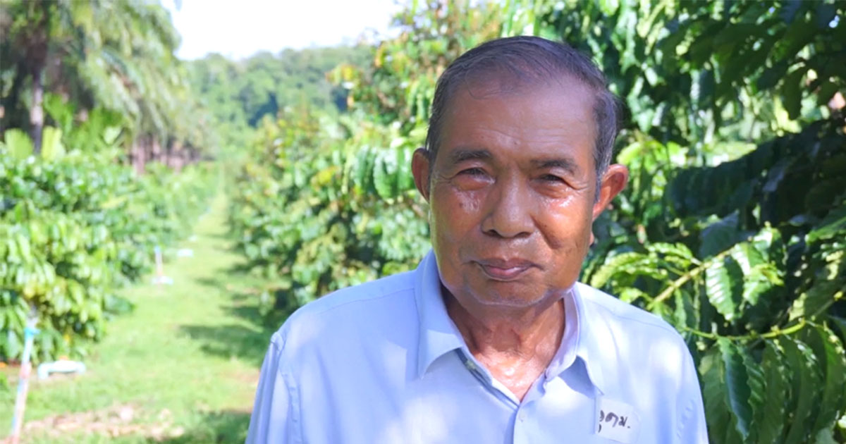 Robusta coffee farmers in southern Thailand share their proud moments